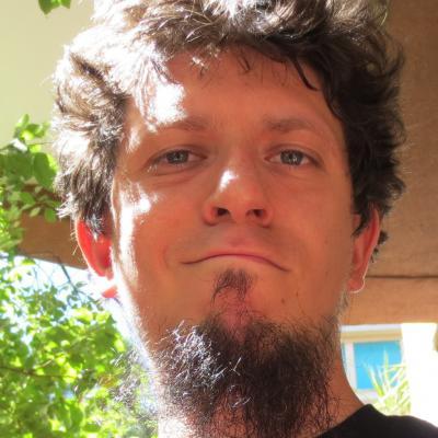Giulio Fidente