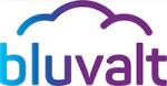Bluvalt_small_logo