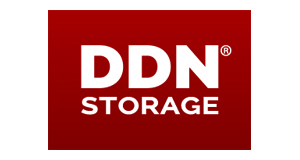 DDN Storage_big_logo